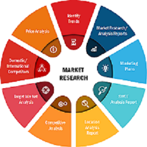 care management solutions market growing technology trends led by zeomega i2i population health epic systems pegasystems salesforce