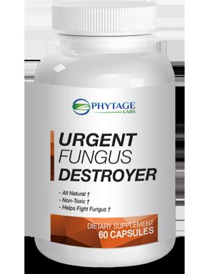 phytages urgent fungus destroyer reviews safe ingredients